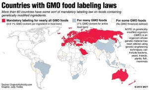 GMO Labeling Laws Around the World: The 64 Countries That Do It